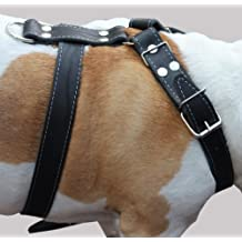 "Genuine Leather Dog Harness, Large to XLarge. 33""-37"" Chest, 1.5"" Wide Straps, Rottweiler Bulldog"