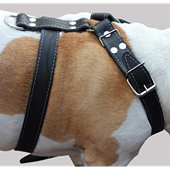 """Black Genuine Leather Dog Harness, Large to XLarge. 33""""-37"""" Chest, 1.5"""" Wide Straps, Rottweiler Bulldog"""