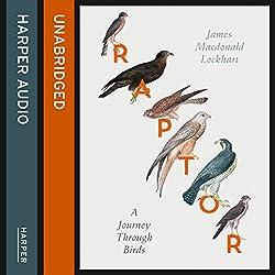 Raptor: A Journey Through Birds
