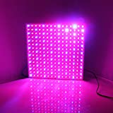 SPL 14W Plant Grow Red & Blue Light Square Shape Panel Lamp with US Plug for Flowering Plant, Hydroponics System