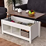 Cheap Premium Quality Low Coffee Table with Hidden Lift Top and Lower Storage Compartment for Contemporary Home and Living Room (1, White)