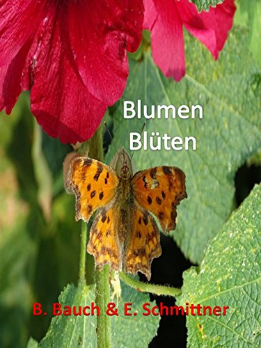 blumen-blten-german-edition