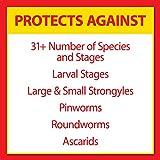 Farnam Pyrantel Care Daily Dewormer