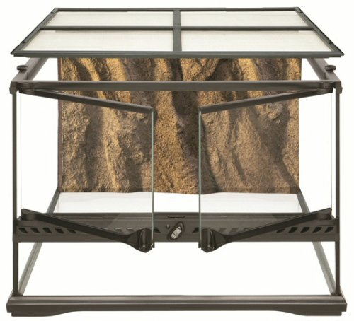 Exo Terra Short All Glass Terrarium, 18 by 18 by 12-Inch - Glass Reptile Terrarium