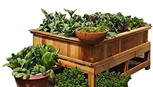 Amazoncom 4X6 Garden Box Kit wLegs 30 tall Redwood Patio