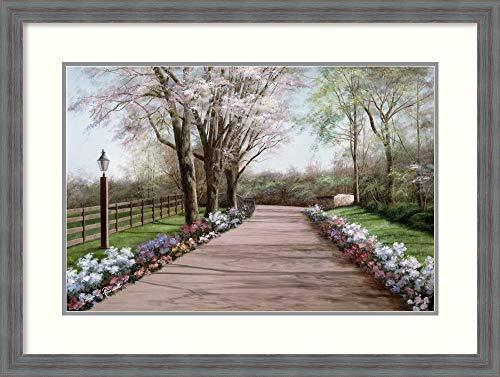 Amanti Art Country Lane by Diane Romanello Framed Art Print, P4358290