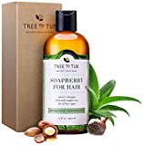 Cleansing Conditioner Oily Hair - Organic Shampoo for Men & Women, pH 5.5—the Only Deep Clarifying Shampoo that Cleans with Ayurvedic Antibacterial & Antifungal Soapberry Lather, Invigorating Peppermint Oil, 11oz—Tree to Tub