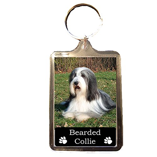 Bearded Collie - Collectable Dog Keyring
