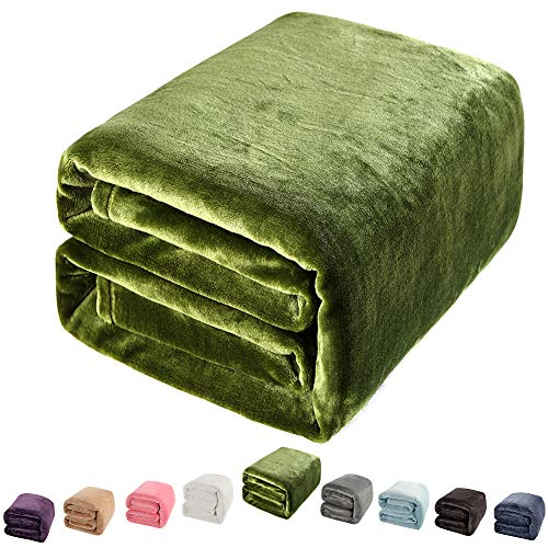 Shilucheng Luxury Fleece Blanket Super Soft and Warm Fuzzy Plush Lightweight Couch Bed Blankets (Twin, Green)