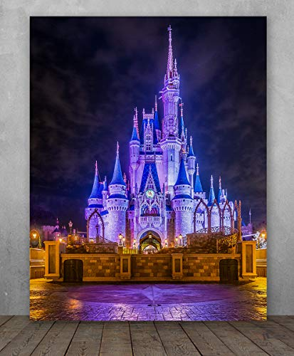 - Poster - Cinderella's Castle Night Photo - Forgiveness Laughter Love - Choose Unframed Poster or Canvas - Makes a Great Gift for Disney Fans