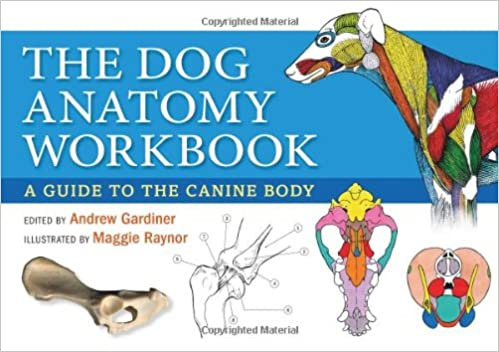 The Dog Anatomy Workbook: A Guide to the Canine Body: Amazon.co.uk ...