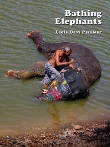 Bathing Elephant - Bathing Elephants