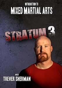 Intro to Mixed Martial Arts: Stratum 3