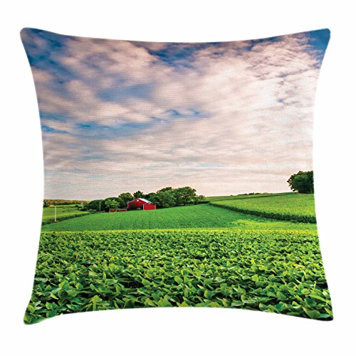 Lunarable Nature Throw Pillow Cushion Cover, Sunset Clouds Over a Farm in Southern York Pennsylvania Nature Scenery, Decorative Square Accent Pillow Case, 26 X 26 Inches, Lime Green Blue Red
