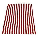 Microfiber Beach Blanket/Outdoor Picnic Blankets (64 x 76 inches) XL Beach Towel - Fits Two - Corner Anchor Pockets - Sand Free - Fast Dry - Travel - Sport - Camping