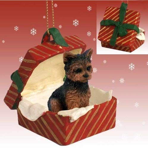 YORKSHIRE Terrier YORKIE Dog sits in a Polyresin RED Gift Box Christmas Ornament New RGBD131