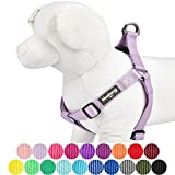 Blueberry Pet 19 Colors Step-in Classic Dog Harness, Chest Girth 20'' - 26'', Lavender, Medium, Adjustable Harnesses for Dogs