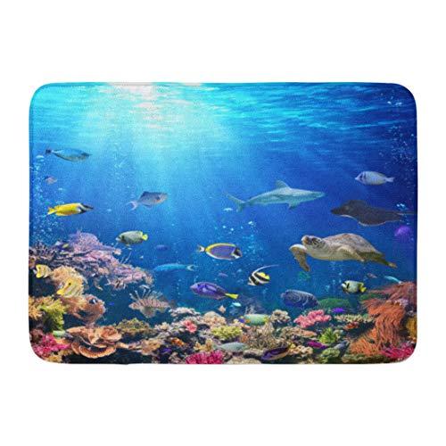 Emvency Doormats Bath Rugs Outdoor/Indoor Door Mat Blue Aquarium Underwater Scene Coral Reef and Tropical Fish Colorful Seabed Bathroom Decor Rug Bath Mat 16