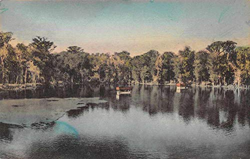 (Wakulla Springs Florida Scenic View Vintage Postcard JB626376)
