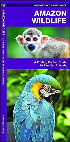Wildlife A Folding Pocket Guide to Familiar Animals