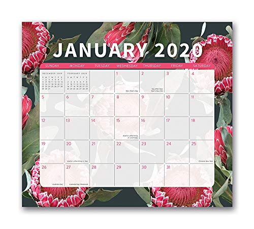 Orange Circle Studio 2020 Magnetic Monthly Calendar Pad, August 2019 - December 2020, Floral Expressions