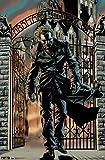 Arkham Asylum - Joker Poster 22 x 34in