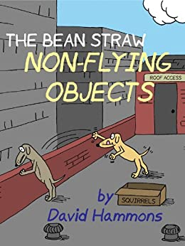 The Bean Straw: Non-Flying Objects by [Hammons, David]