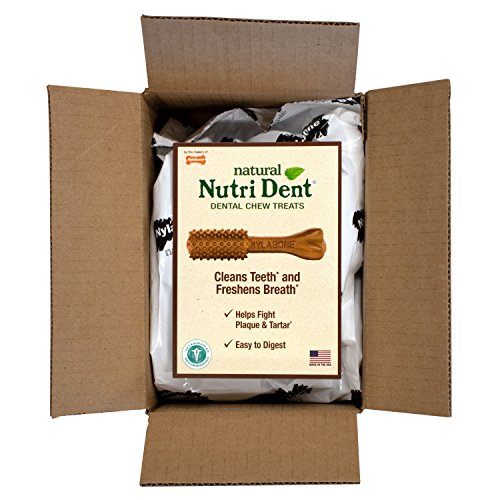 - Nylabone Nutri Dent Natural Dental Treats,filet mignon Dental Chews for Medium Dogs, 32 Count