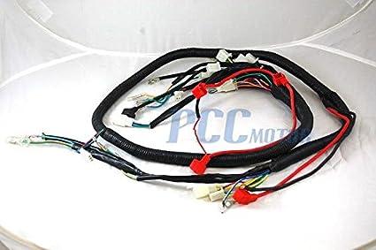 512b2%2BNu3mL._SX425_ amazon com 2la chinese gy6 250cc wire harness wiring assembly