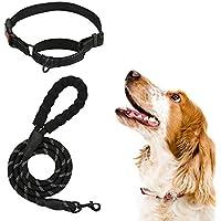 Juego de collar y correa para perro, correa de perro ajustable con cómodo mango acolchado y cierre de metal resistente…
