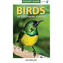 Pocket Guide: Birds of Southern Africa