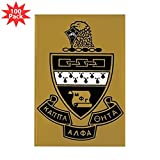 CafePress - Kappa Alpha Theta Cres - Rectangle Magnet (100 pack)