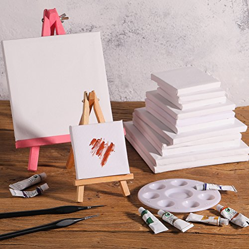 12 Pieces Assorted Size Mini Art Canvas Stretched for Craft Painting Drawing