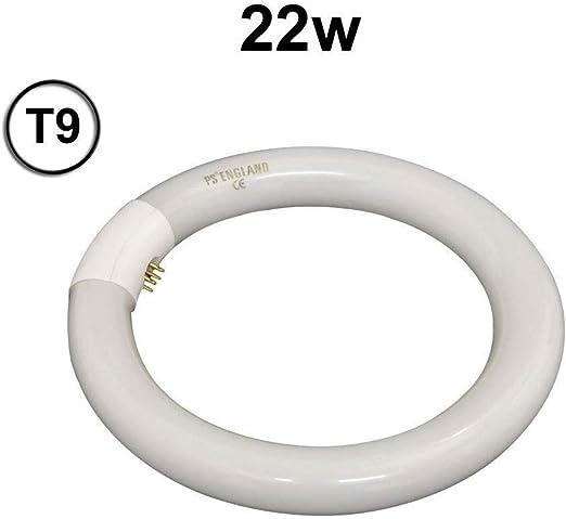 2 X BELL T9 CIRCULAR FLUORESCENT TUBE 60 WATT COLOUR 840 G10q COOL WHITE BRANDED