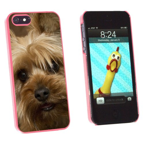 Graphics and More Yorkshire Terrier Yorkie Dog - Snap-On Hard Protective Case for Apple iPhone 5/5s - Non-Retail Packaging - Pink