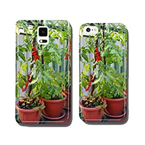 Red cluster tomato in a cultivated plant in town on a balcony cell phone cover case Samsung S6