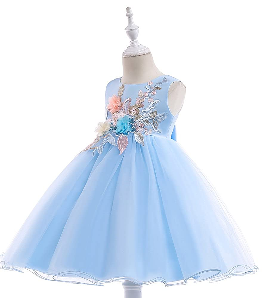17bec12cb0654 Amazon.com: WEONEDREAM 3-10 Girl Floral Flower Girl Dresses: Clothing