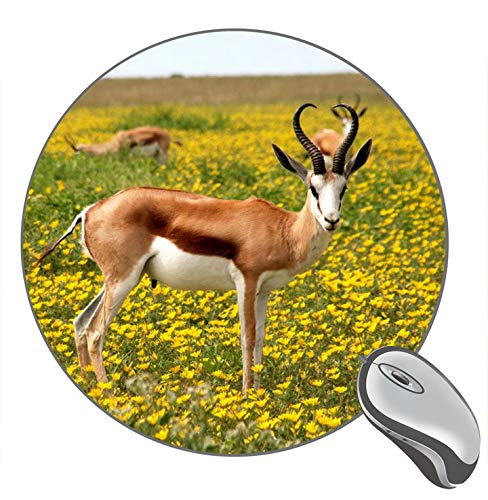 Animals Antelopes Print Round Desktop Mouse Pad Gaming Rubber Mouse Pad