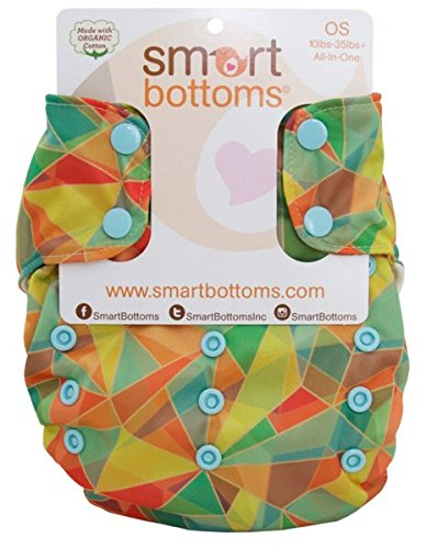 ONE 3.1 Organic All-in-one Cloth Diaper (Kaleidoscope Adventure) ()