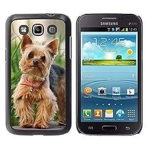 Caucho caso de Shell duro de la cubierta de accesorios de protección BY RAYDREAMMM - Samsung Galaxy Win I8550 I8552 Grand Quattro - Cute Happy Yorkie Terrier