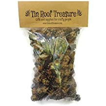 Natural Eastern Hemlock Miniature Pine Cones 100 Count