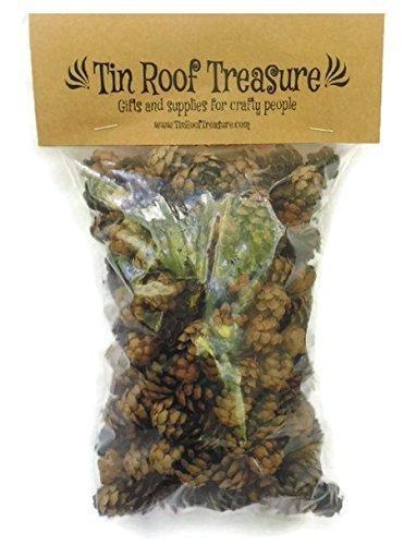Natural Eastern Hemlock Miniature Pine Cones 100 Count