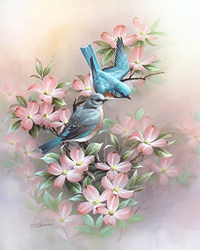 of Watercolor Painting, Dogwood Flowers ()