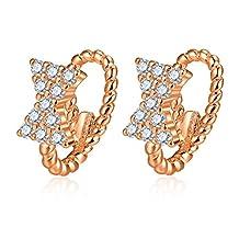 Lady Joker fashion earrings Simple Silver earrings