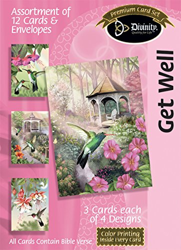 Divinity Boutique Greeting Card Assortment: Get Well, Hummingbirds (21242N)