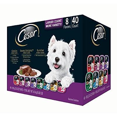 CESAR Canine Cuisine Wet Dog Food Trays