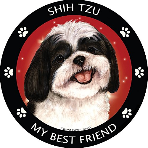 - Shih-Tzu My Best Friend Magnet
