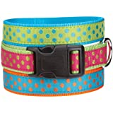 East Side Collection Nylon Polka Dot Dog Collar, 10-16-Inch, Parrot Green