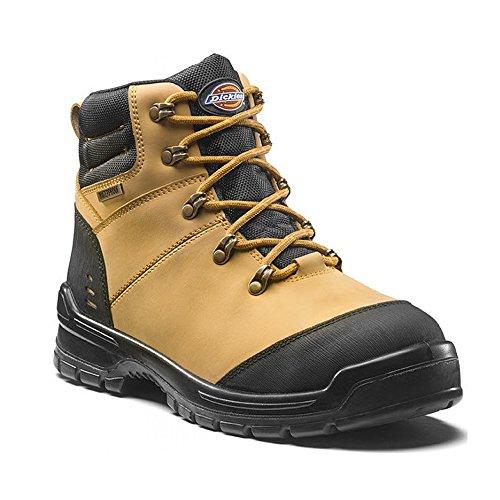 Sikkerhet Dickies Vanntett Arbeid Svart Cameron metalliske Støvler Ikke Fc9535 Gul AwwO6x