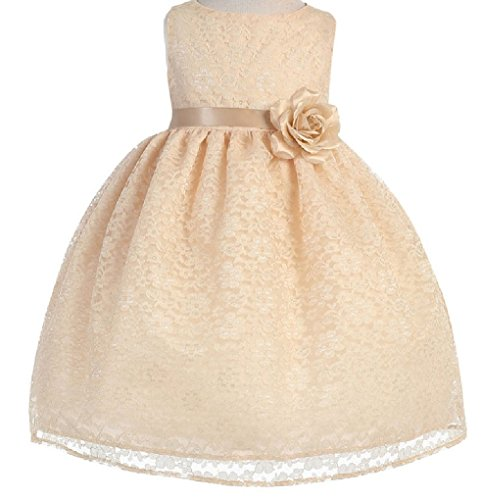 Strapless Cathedral Train - Little Baby Girls' Lovely Floral Lace Cute Wedding Easter Flowers Girls Dresses Champagne Size 18M